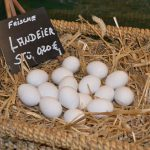 Hof Rodenbeckenschnieder: Hofladen