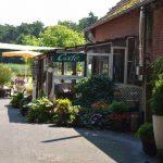Das Café auf dem Hof Rodenbeckenschnieder