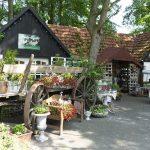 Florales & Mehr auf dem Hof Rodenbeckenschnieder
