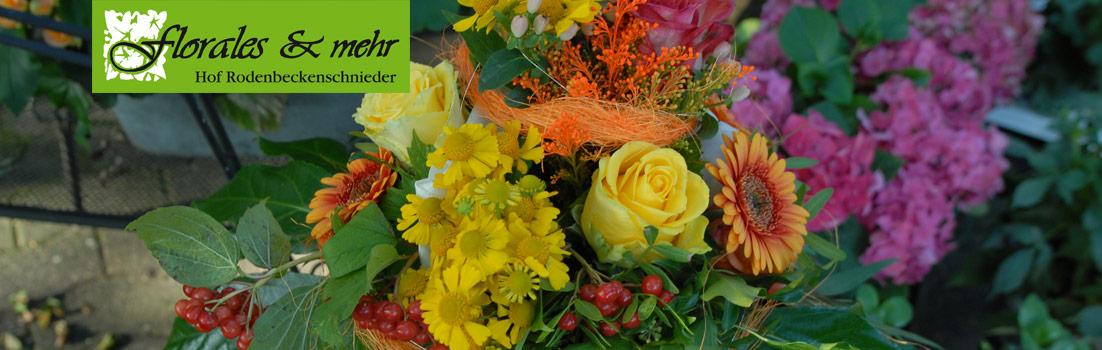 Titelbild der Floralesseite des Hofes Rodenbeckenschnieder